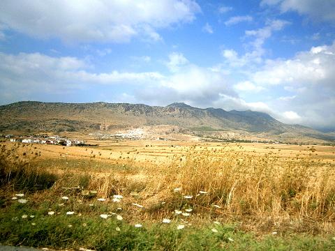 Nordzypern: goldgelbes Feld vor Bergen